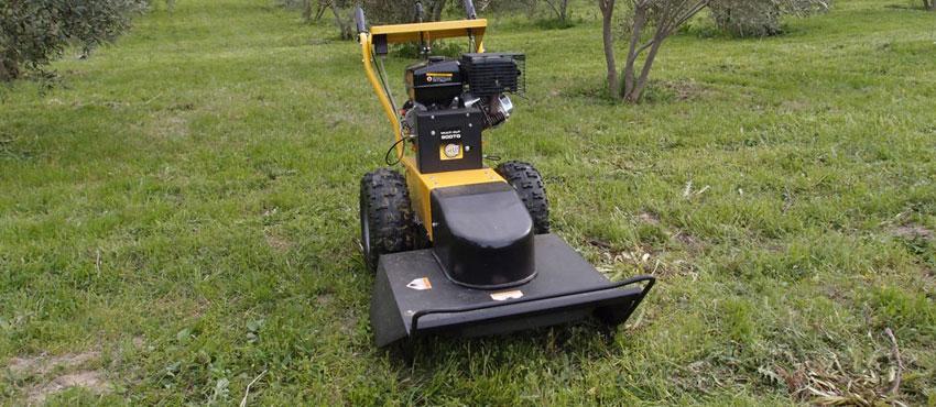 Διαχείριση αγριόχορτων σε ελαιώνα με Multicut 900